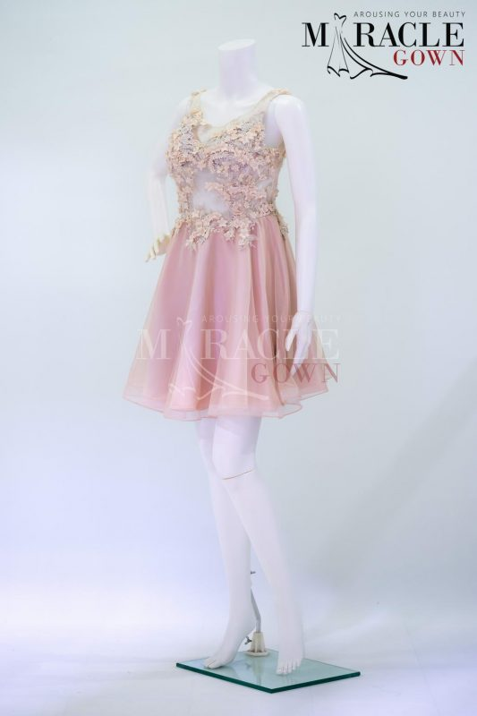 Sewa Gaun Surabaya - Miracle Gown - Blush tinted round dress